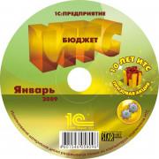 ИТС. Бюджет DVD, подписка на 6 мес